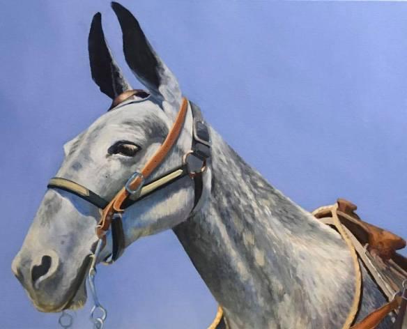 The Regal Mule
